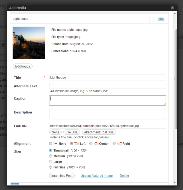 Insert image box in Wordpress admin