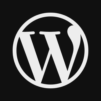 The wordpress coding standards