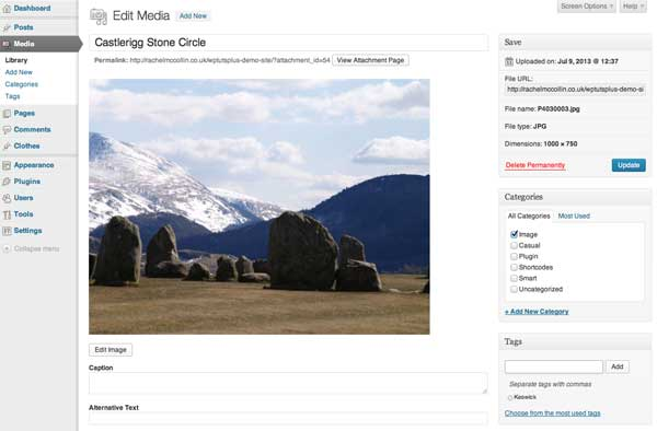 attachments-and-taxonomies-media-editing-screen-with-tags