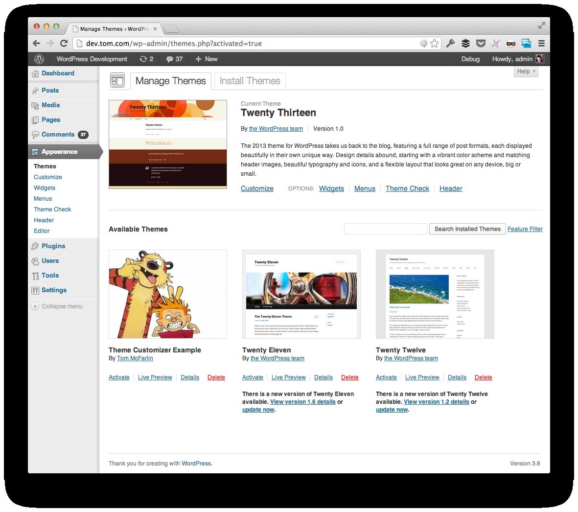 Theme Customizer Example