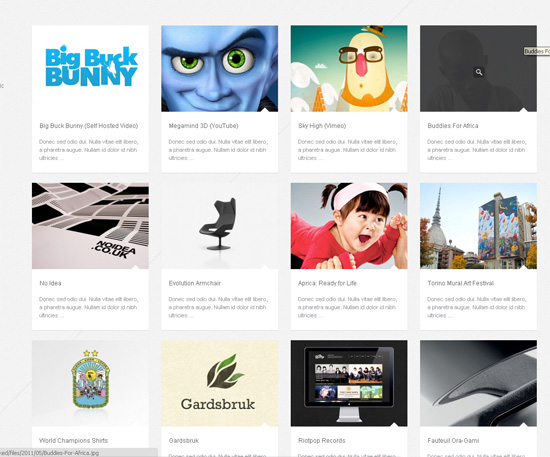 40+ Stunning Wordpress Portfolio Themes