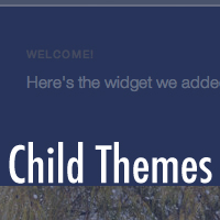 Preview for Creating a Simple Child Theme Using Twenty Eleven