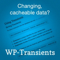 Wp transients