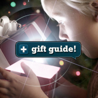 Preview for 20+ Great Gift Ideas for Any WordPress Developer