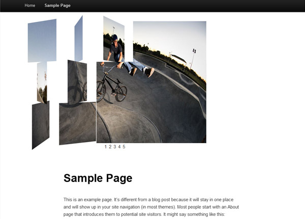 Creating Your Own Image Gallery Page Template in WordPress
