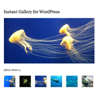 Preview for How to Create an Instant Image Gallery Plugin for WordPress
