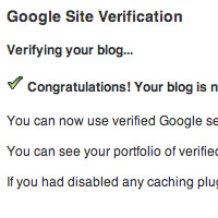 Google site verificaion preview