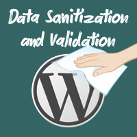 Sanitization and validation preview